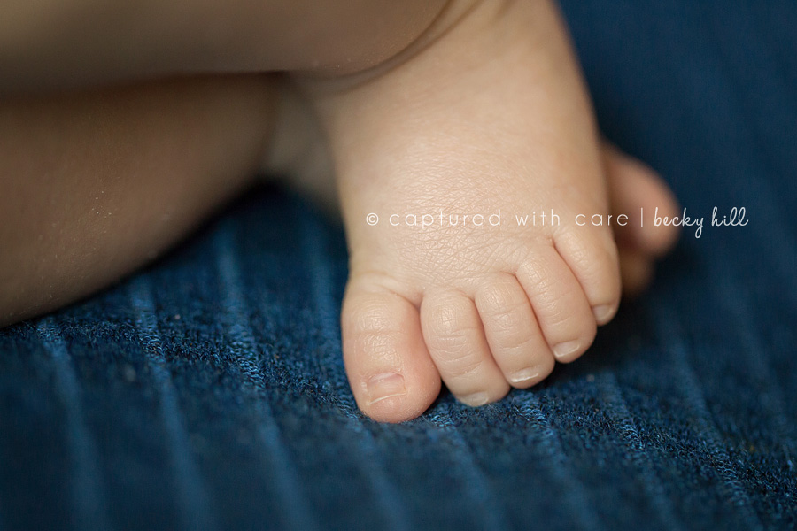 5 cute baby toes, professional photo
